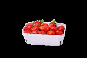 packaging fragole matera basilicata zuccarella